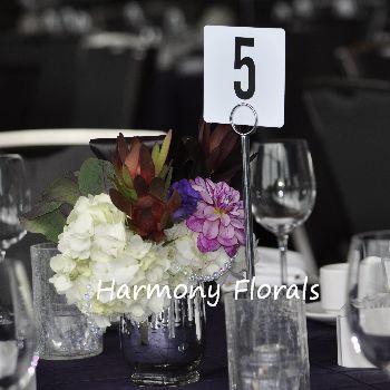 Harmony_Events16