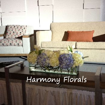 Harmony_Events31