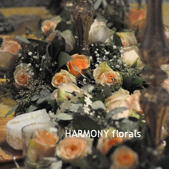 Harmony_Weddings11